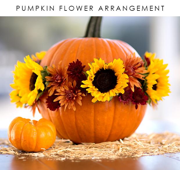 pumnpkin-flower